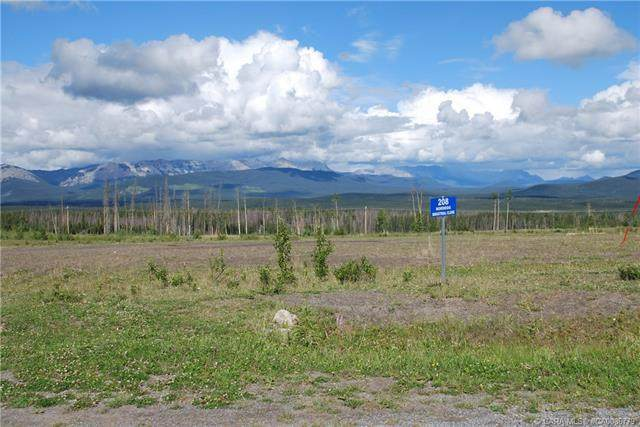 208 Nordegg Industrial Close, Rural Clearwater County, AB T0M 2H0 (#CA0086779) :: Canmore & Banff