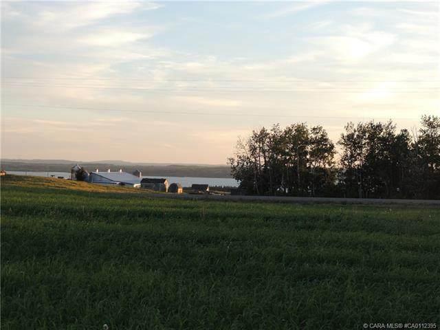 421057 Range Road 284 #4, Rural Ponoka County, AB T0C 0J0 (#CA0112395) :: Western Elite Real Estate Group