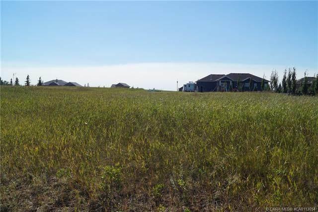 220 Sand Belt Drive, Rural Ponoka County, AB T4J 1R3 (#CA0113054) :: Calgary Homefinders