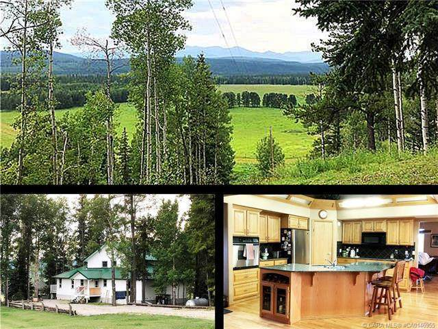202 Misty Valley Close, Rural Clearwater County, AB T0M 2H0 (#CA0146955) :: Canmore & Banff