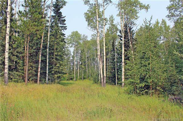 5 Ridgeland Road, Rural Clearwater County, AB T4T 2A4 (#CA0158921) :: Canmore & Banff