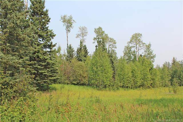 4 Forest Close, Rural Clearwater County, AB T4T 2A4 (#CA0158923) :: Canmore & Banff