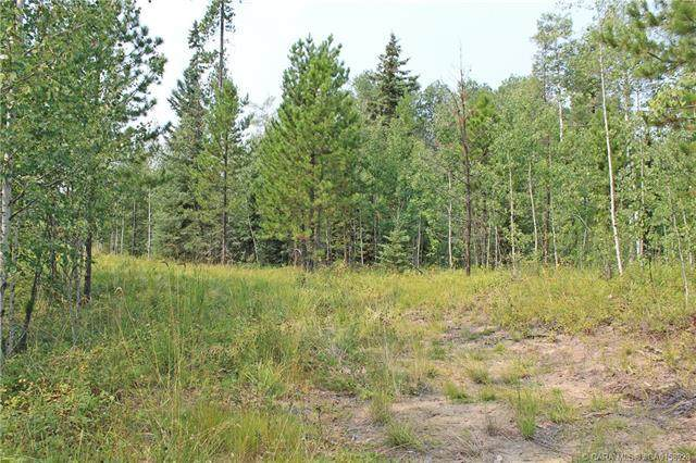 33 Ridgeland Road, Rural Clearwater County, AB T4T 2A4 (#CA0158928) :: Canmore & Banff