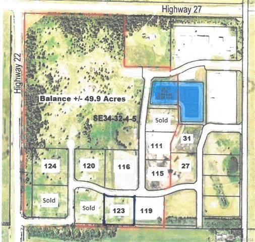 123-32532 Range Road 42, Rural Mountain View County, AB T0M 1X0 (#CA0183154) :: Calgary Homefinders