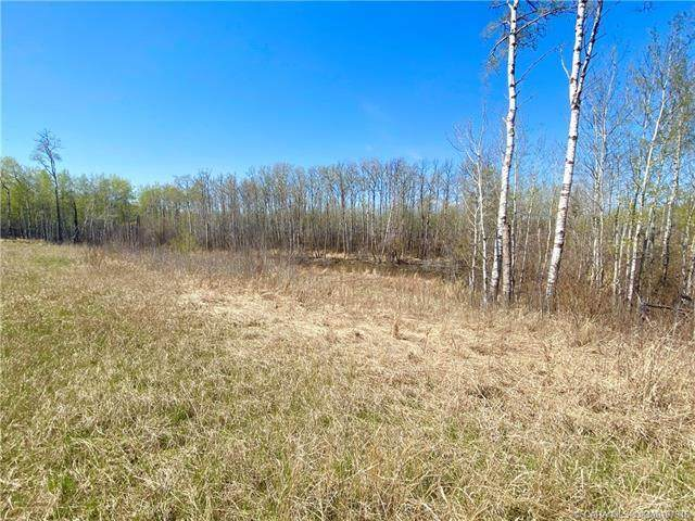 50072 Range Road 205 #166, Rural Camrose County, AB T4V 1X3 (#CA0187946) :: Western Elite Real Estate Group