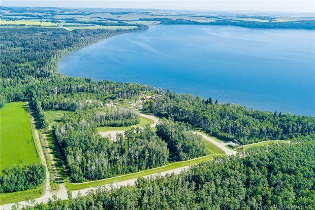 32 Eagle Drive, Rural Lacombe County, AB T0J 0C0 (#CA0191836) :: Canmore & Banff