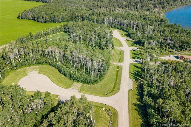 60 Eagle Drive, Rural Lacombe County, AB T0J 0C0 (#CA0191849) :: Canmore & Banff