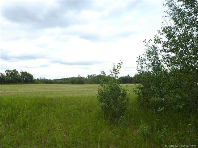 22113 Township Road 440 #218, Rural Camrose County, AB T0B 1M0 (#CA325225) :: Canmore & Banff