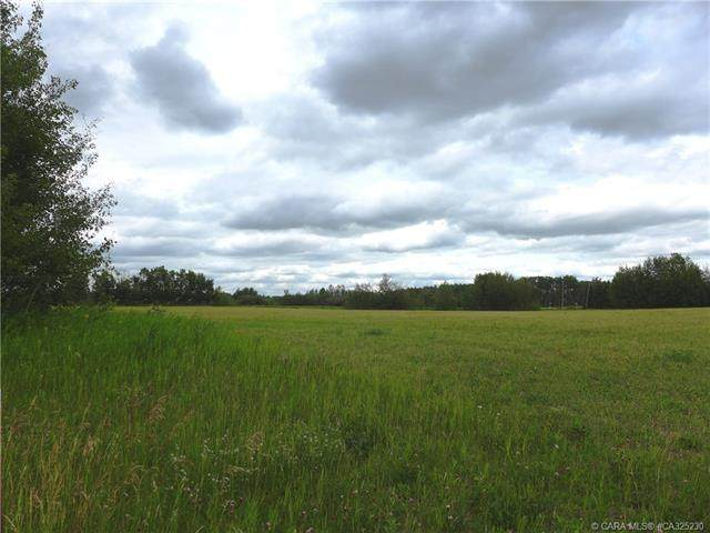 22113 Township Road 440 #222, Rural Camrose County, AB T0B 1M0 (#CA325230) :: Canmore & Banff