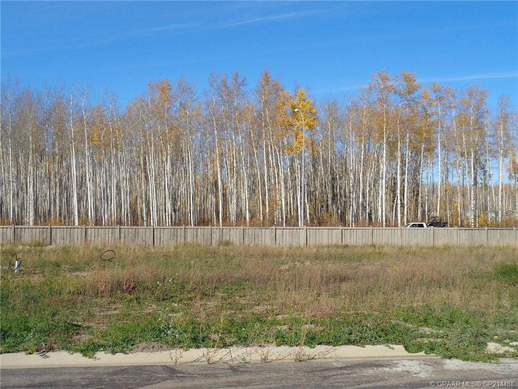 17 Bear Creek Drive - Photo 1