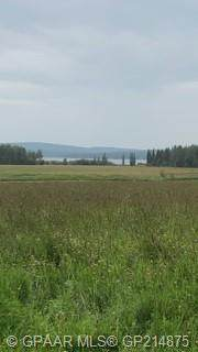 Pt. of Ne 31 75 13 W6, Rural Saddle Hills County, AB T0H 4C0 (#GP214875) :: Calgary Homefinders