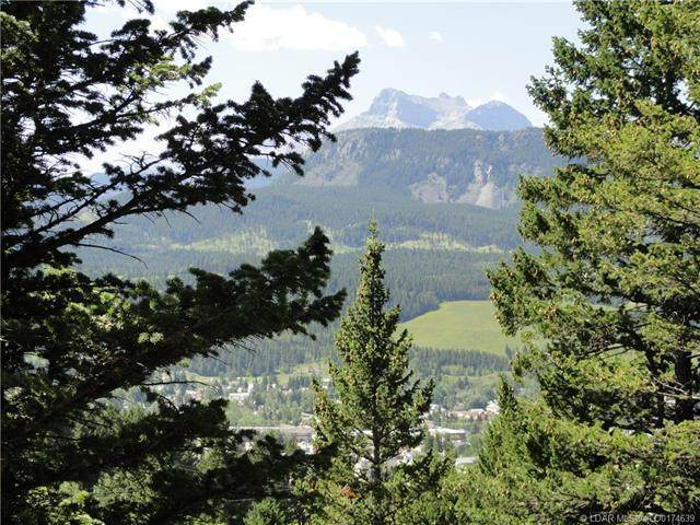 Pt of Kananaskies Es 90 Street, Crowsnest Pass, AB T0K 0M0 (#LD0174639) :: Team J Realtors