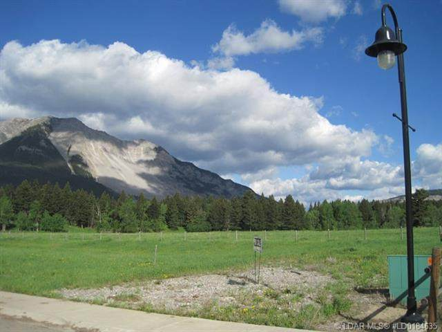 21502 29 Avenue, Rural Crowsnest Pass, AB T0K 0C0 (#LD0184635) :: Canmore & Banff