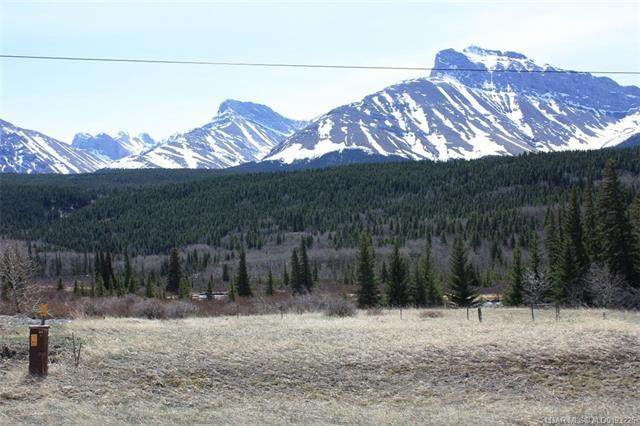 3602 18 Avenue, Rural Crowsnest Pass, AB T0K 0M0 (#LD0193225) :: Canmore & Banff