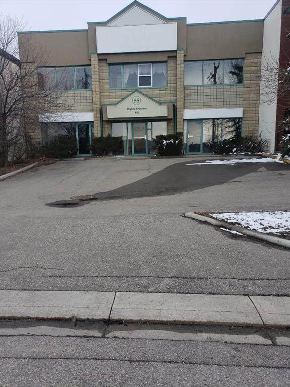 55 Skyline Crescent NE, Calgary, AB T2K 5X2 (#A1086311) :: Calgary Homefinders