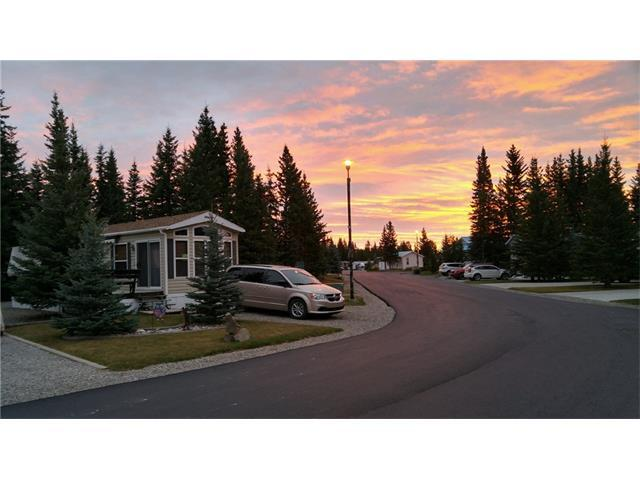 70 Coyote Creek, Rural Mountain View County, AB T0M 1X0 (#C4132131) :: The Cliff Stevenson Group