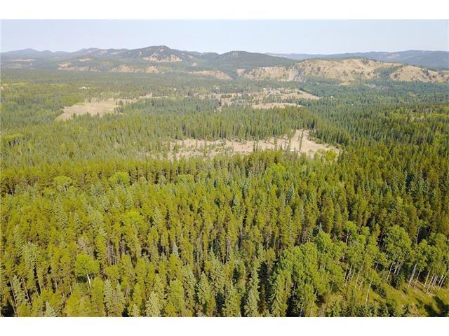 Jamieson Road, Rural Bighorn M.D., AB T3H 3W8 (#C4136387) :: Canmore & Banff