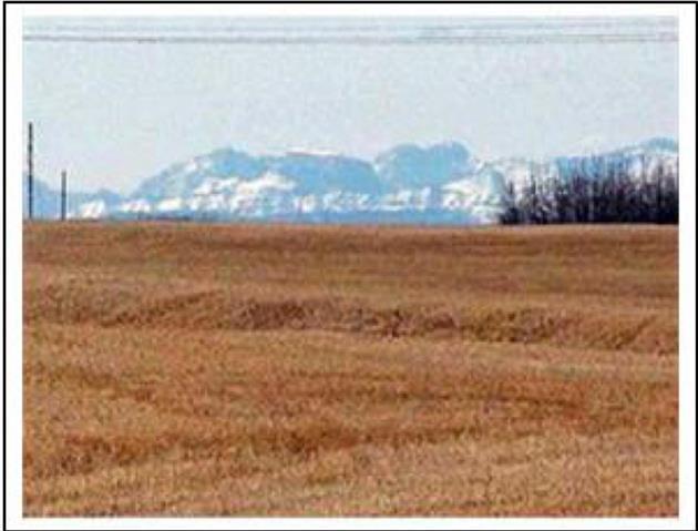 9669 84 Street NE, Calgary, AB T2L 1W8 (#C4138009) :: The Cliff Stevenson Group
