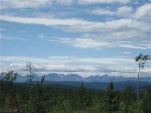 Larsen Pasture Road, Rural Bighorn M.D., AB T4C 1A1 (#C4162241) :: Canmore & Banff