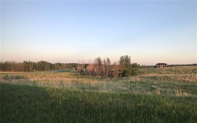 61 Silverhorn Boulevard, Rural Rocky View County, AB T3R 0X3 (#C4165965) :: The Cliff Stevenson Group