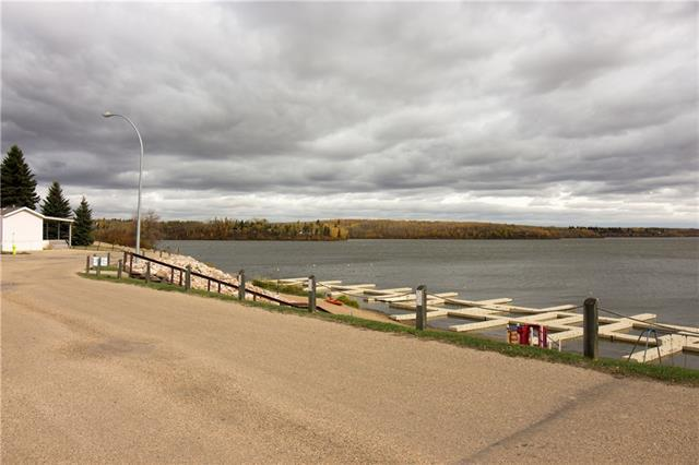 1028 25054 South Pine Lake, Rural Red Deer County, AB T0M 1S0 (#C4166572) :: Redline Real Estate Group Inc