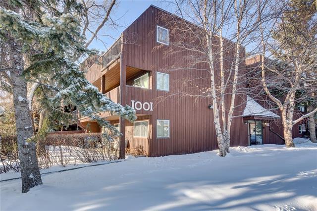1001 68 Avenue SW #209, Calgary, AB T2V 4X1 (#C4173545) :: Redline Real Estate Group Inc