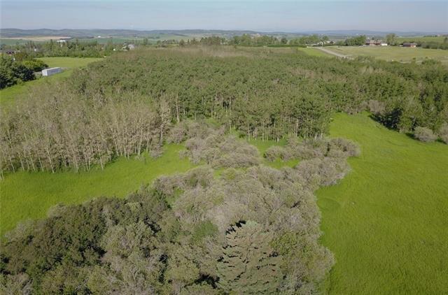 198010 96 Street W, Rural Foothills M.D., AB T0L 1J9 (#C4177062) :: Redline Real Estate Group Inc