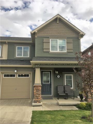 252 Viewpointe Terrace, Chestermere, AB T1X 0T2 (#C4185246) :: The Cliff Stevenson Group