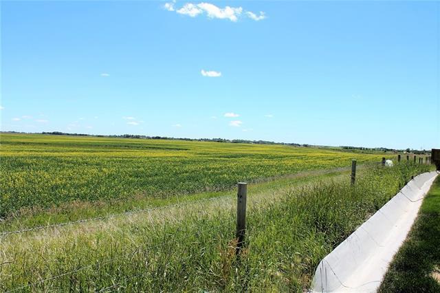 240249 Range Road 281, Chestermere, AB T1X 0M5 (#C4194834) :: Tonkinson Real Estate Team