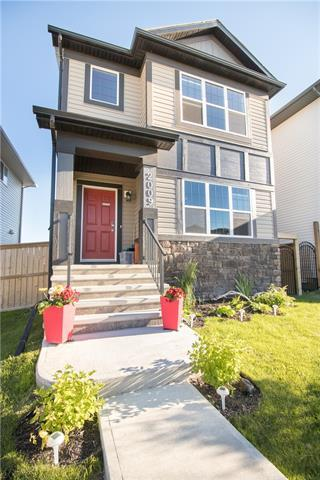 2009 Reunion Link NW, Airdrie, AB T4B 0Z5 (#C4195668) :: Calgary Homefinders