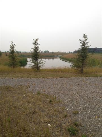 503 Green Haven View, Rural Foothills M.D., AB T1S 1A4 (#C4202307) :: The Cliff Stevenson Group