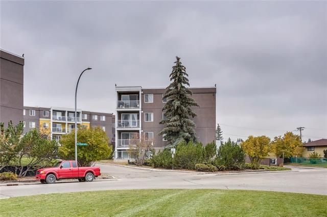 4455D Greenview Drive NE #302, Calgary, AB T2M 6M1 (#C4209551) :: Tonkinson Real Estate Team