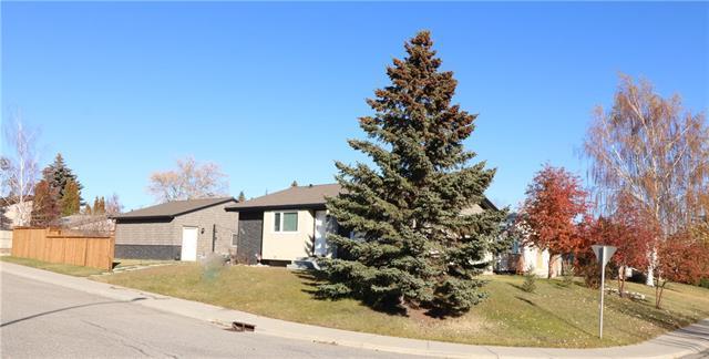 171 Ogden Rise SE, Calgary, AB T2C 3E9 (#C4209697) :: Your Calgary Real Estate