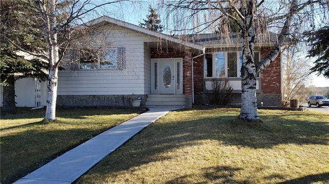 313 Thorndale Place, Strathmore, AB T1P 1C5 (#C4210793) :: Your Calgary Real Estate