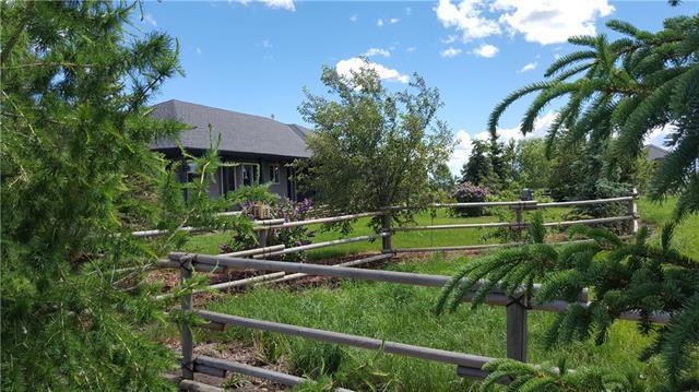 20041 496 Avenue E, Rural Foothills County, AB T1V 1N1 (#C4228395) :: The Cliff Stevenson Group