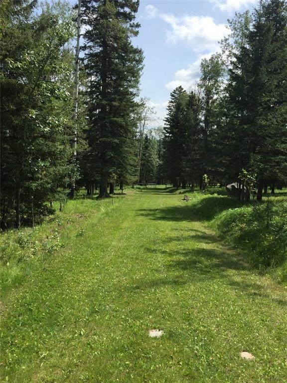 215 Wintergreen Road, Rural Rocky View County, AB T0L 0K0 (#C4290335) :: Redline Real Estate Group Inc