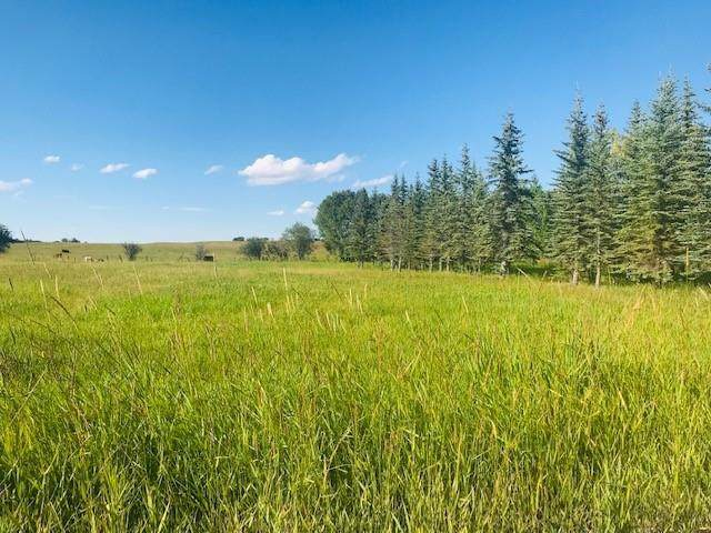 LOT 2 Rocky Mountain View Estates, Rural Foothills County, AB T0X 0X0 (#C4305348) :: Calgary Homefinders
