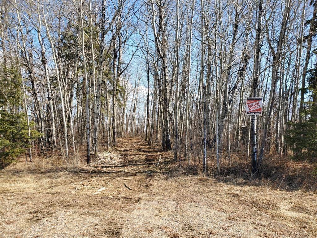 Lot 3 Campsite Road - Photo 1