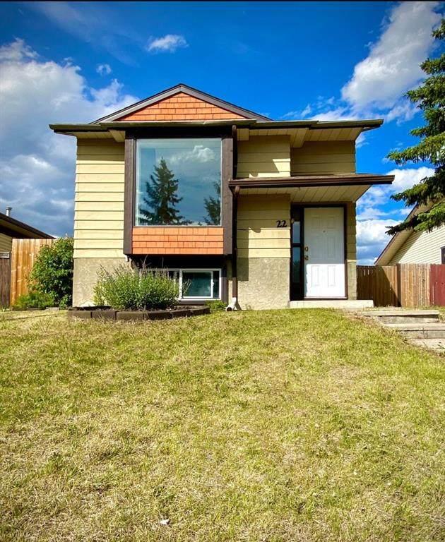 22 Aberdare Road NE, Calgary, AB  (#A1110138) :: Calgary Homefinders