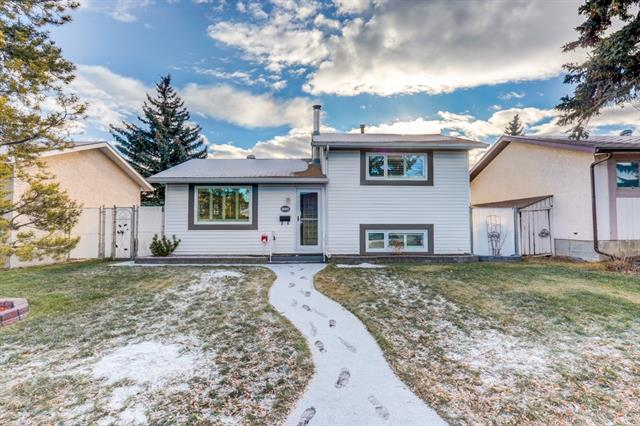 880 Pinecliff Drive NE, Calgary, AB T1Y 3W7 (#C4164414) :: Redline Real Estate Group Inc