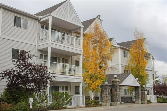 1080A Cougar Creek Drive #308, Canmore, AB T1W 1A4 (#C4209613) :: Redline Real Estate Group Inc