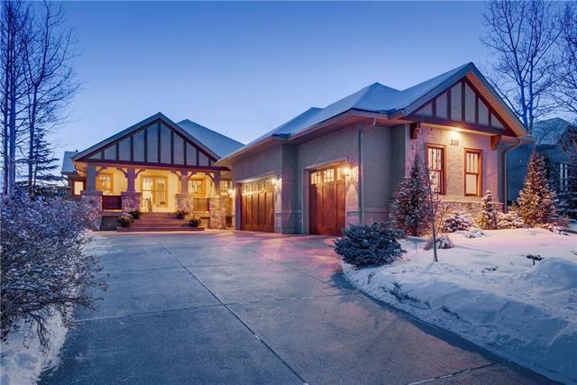 339 Diamond Willow Point(E), Rural Rocky View County, AB T3Z 2Z5 (#C4224347) :: Redline Real Estate Group Inc