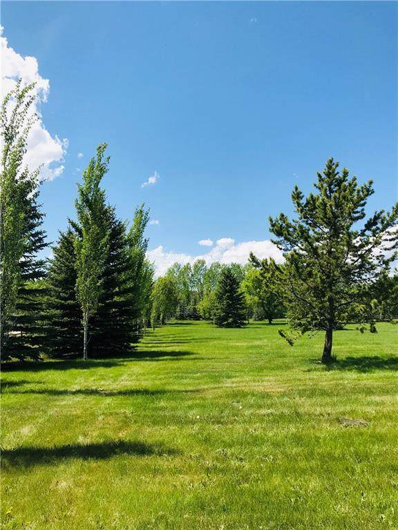 LOT 23 286 Avenue E, Rural Foothills County, AB T0L 0X0 (#C4252678) :: Calgary Homefinders