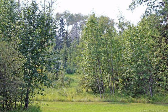 4 Forest Close, Rural Clearwater County, AB T4T 2A4 (#CA0158923) :: Calgary Homefinders