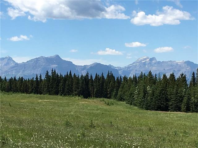 7 Red Fox Road, Ghost Lake, AB T4C 1A5 (#C4110045) :: Canmore & Banff