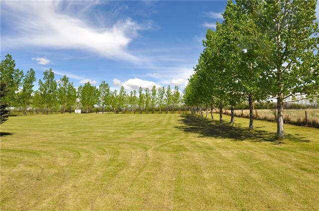 11809 146 Avenue SE, Calgary, AB T2C 3W5 (#C4117264) :: Tonkinson Real Estate Team