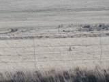 14922 Highway 51 - Photo 16