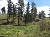Tbd Gold Rush Trail - Photo 1