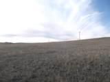 0 Highway 59 - Photo 3
