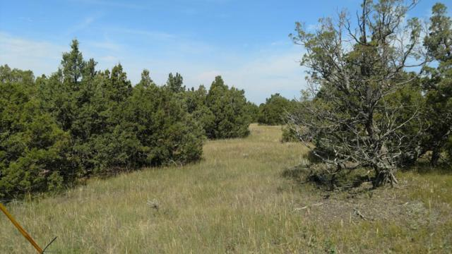 Tract 11 Sundown Ranch, Upton, WY 82730 (MLS #17-1372) :: 411 Properties